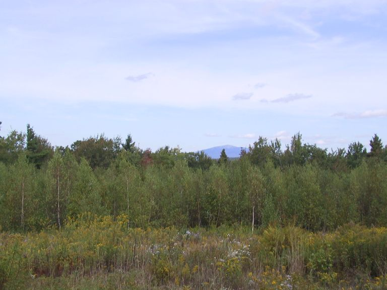 Forests, fields, and the view of Mount Monadnock