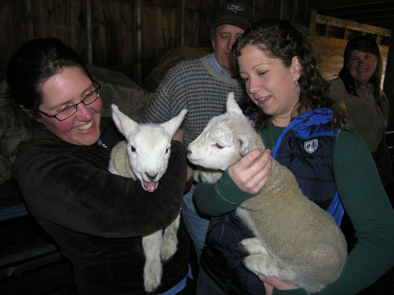 Two women holding lambs
