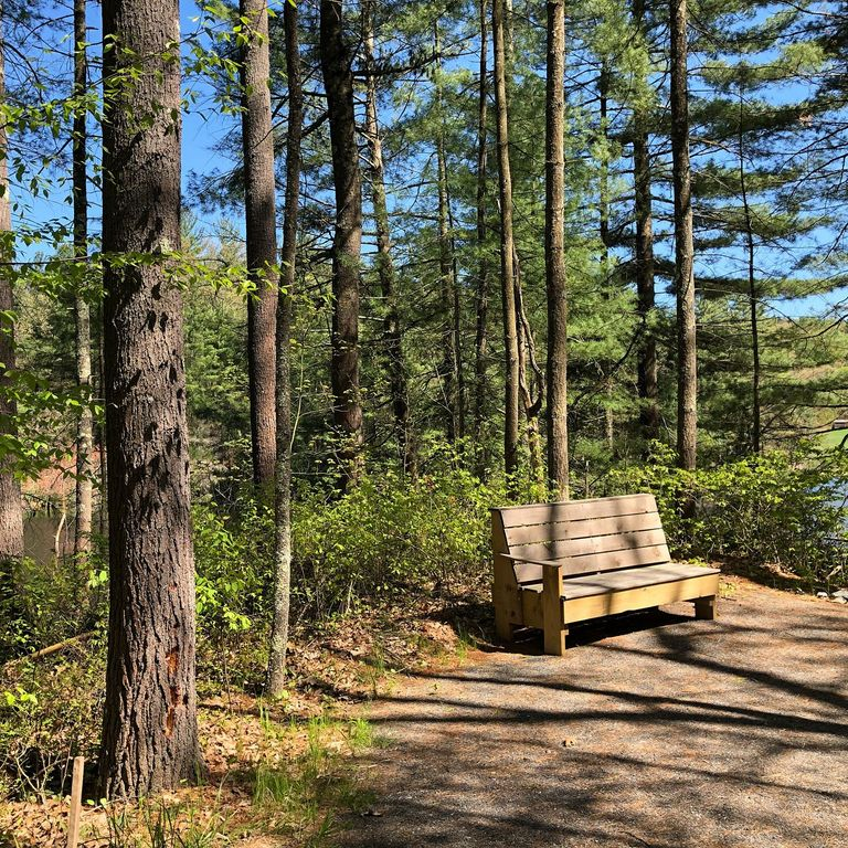 Bench on trail at Alderbrook Meadows Wildlife Sanctuary in Northfield