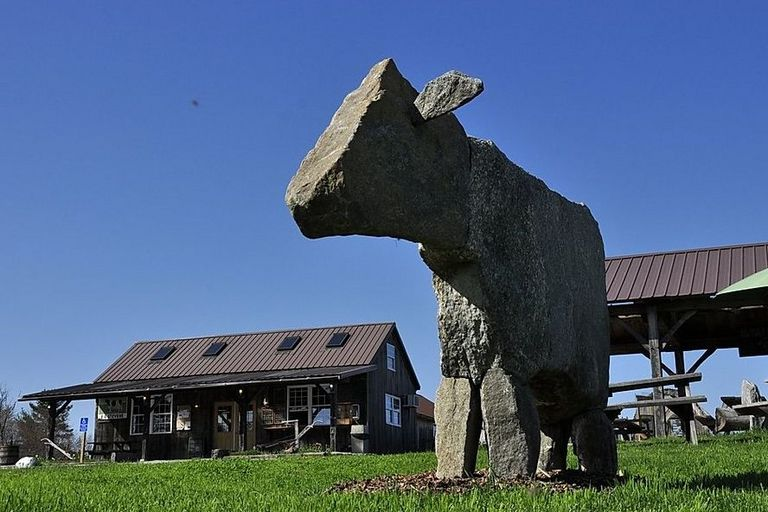 Stone cow at Carter & Stevens Farm