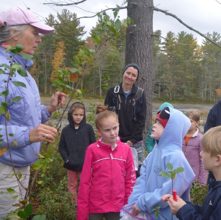 Royalston Community School students learning about buckthorn at Eagle Reserve Conservation Area