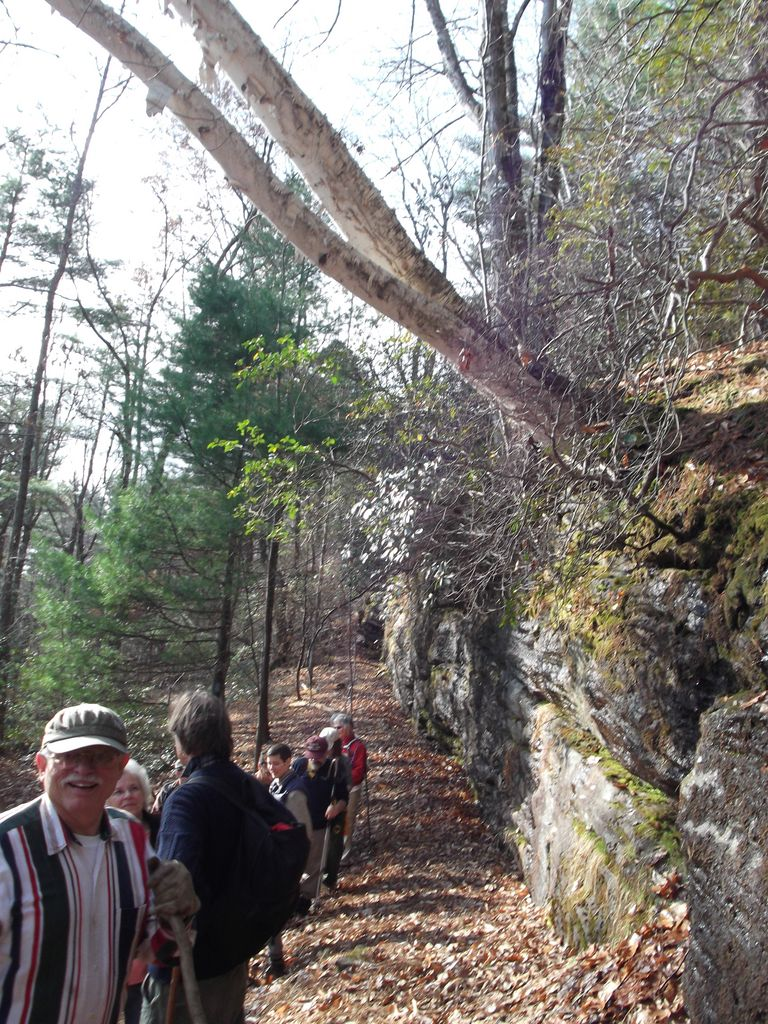 Bedrock outcrops along hiking trail at Erving Town Forest