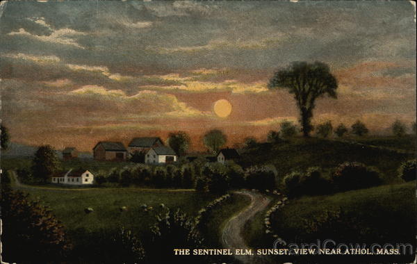 Landscape painting of Sentinel Elm Farm